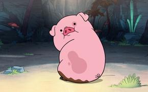 Picture pink, pig, pig, Gravity Falls, Gravity Falls, Waddles, Mabel, Puglia