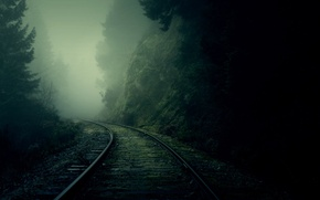 Picture forest, fog, rails, turn