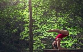 Picture grace, log, gymnast, exercise, Marie-Lou Lagrange