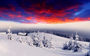 Picture winter, forest, snow, dawn, glow, houses, village, tree, hills