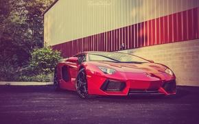 Picture Lamborghini, Red, Front, Supercar, Before, LP700-4, Aventador, Supercar, Rosso Efesto