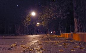 Picture asphalt, foliage, Street, border, lantern, bokeh