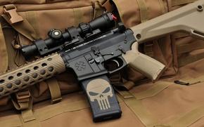 Picture weapons, skull, machine, optics, the Punisher, assault rifle, assault rifle, punisher