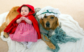 Picture dog, little red riding hood, girl