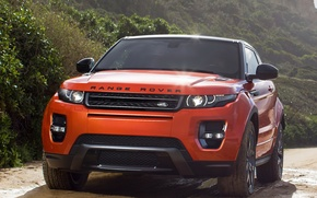Picture Trees, Evoque, Rover, Range