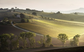 Picture landscape, italiano, natura, The rays of the morning