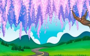 Picture hills, path, Wisteria