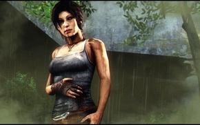 Picture forest, girl, rain, wound, Lara Croft