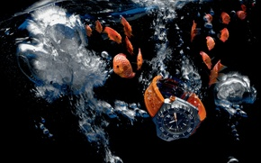 Picture water, Watch, Omega, Seamaster, 1200M, Ploprof