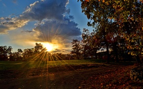 Picture road, the sky, the sun, clouds, rays, trees, sunset, the evening