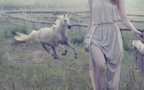 Picture girl, fog, horse, fence, brown hair