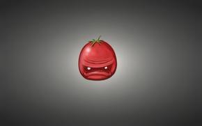 Picture red, minimalism, tomato, tomato, vegetable, tomato, dark background