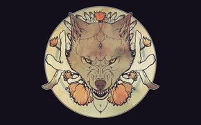 Picture face, wolf, mouth, grin