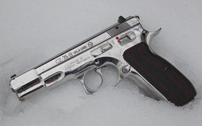 Picture weapons, self-loading pistol, CZ-75B