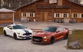 Picture Mustang, Ford, Mustang, Ford, Geiger