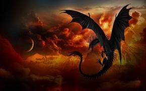 Picture night, fantasy, dragon, art, flight