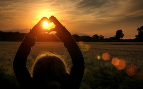 Picture field, girl, the sun, rays, trees, love, sunset, background, widescreen, Wallpaper, mood, heart, hands, spikelets, …