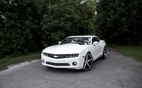 Picture Chevrolet, Camaro, White, Wrapped, Stain