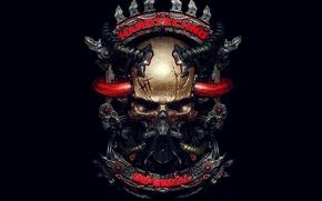 Wallpaper skull, sake, infernal, metallic, Hardtechno