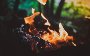 Picture macro, fire, the fire, coal, kebab