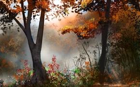 Picture autumn, forest, trees, art, painted landscape