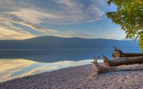 Picture forest, trees, lake, shore, mountain, Glacier National Park, Montana, Lake McDonald