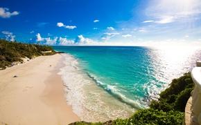 Picture sand, sea, beach, grass, tropics