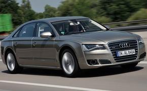 Picture auto, Audi, audi, metalik, quattro