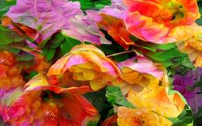 Picture line, flowers, nature, rendering, paint, petals