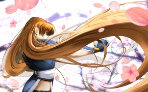 Picture Sakura, red, flowering, long hair, Profit, Dead or Alive, DoA Girls