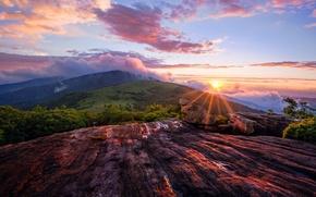 Picture the sun, landscape, dawn, mountain, top