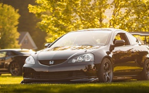 Picture honda, black, japan, Honda, jdm, tuning, front, face, low, acura, stance, integra, rsx