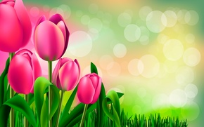 Picture figure, tulips, buds