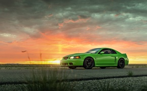 Picture Mustang, Ford, Cobra, Road, SVT, Suset