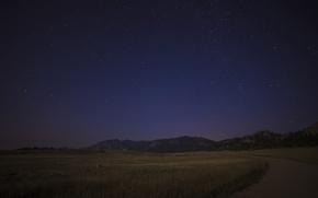 Picture Sky, field, night, stars, darkness