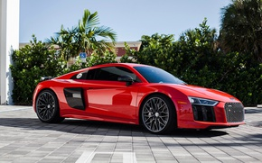 Picture Audi, V10, HRE, r8, Whiils