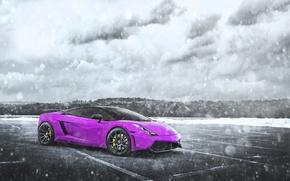Picture Pink, Lamborghini, Gallardo, Purple, Blizzard, Snow, Supercar, Chrome, LP560-4