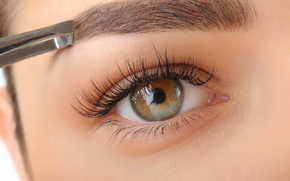 Picture woman, eye, eyelashes, eyebrows