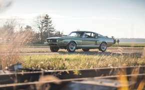 Picture Mustang, Ford, Shelby, GT500, 1967, musclecar