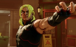 Picture street fighter, fighting, ken masters