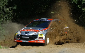 Picture rally, WRC, peugeot