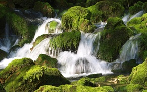 Picture water, stones, waterfall, moss, thresholds