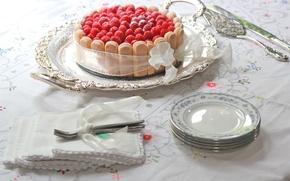 Picture raspberry, food, cake, cake, dessert, sweet, sweet, dessert, ribbon, biscotti, raspberries