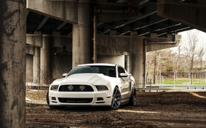 Picture Mustang, Ford, Ford, Muscle, Mustang, white, Car, 5.0, front