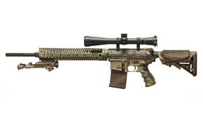 Picture weapons, optics, assault rifle, fry