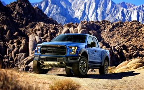 Picture Ford, Ford, Raptor, Raptor, F-150, 2016