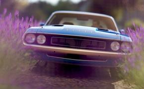 Picture rendering, background, Dodge, Challenger