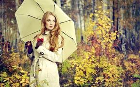 Wallpaper girl, Park, mood, umbrella, blur, beautiful, date, Rowan, bokeh, time, autumn, in the hands, wallpaper., ...