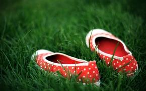 Wallpaper green, shoes, Grass, polka dot
