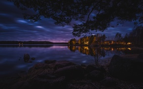 Picture forest, night, lights, lake, boat, home